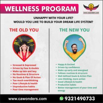 wellness program online